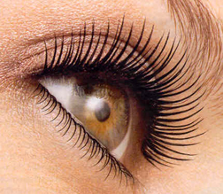 Lengthen those lashes